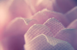 Macro Photograph of Pink Cotton Textile Royalty Free Stock Images