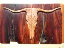 Macro Photograph of Steer Skull Inlay. Macro photograph wood inlay of a steer skull. Western style skull is handcrafted from maple burl. The background is Stock Image