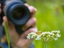 Macro Photographer in action Royalty Free Stock Photos
