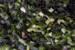 Macro photographie d'un plat des poireaux photos stock