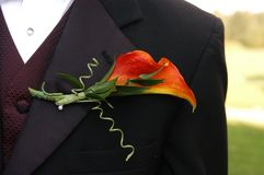 Macro Photography Of Black Formal Dress Coat With Red Flower Design Royalty Free Stock Photo