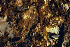 Gold mica in the rock. Macro photography of gold mica in the rockn royalty free stock photo