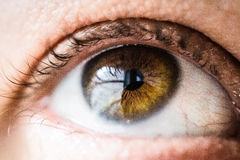Macro Photography of Human Eye Stock Photo