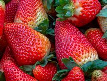Pile of strawberries on a market - closer. Macro photography of a pile of strawberries, captured at the traditional local market of the colonial town of Villa de royalty free stock photography