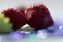 Macro Photography of wild strawberries stock photo
