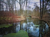 Macro photos avec le fond de paysage du premier jour de mars de ressort en parc Images libres de droits