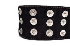 Macro picture of black jeans belt with many buttons  on a white background, copy space royalty free stock photography
