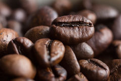 Macro picture of coffee bean Royalty Free Stock Images