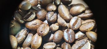 macro picture of coffee beans texture view stock image