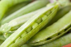 Macro picture of green peas Stock Photos