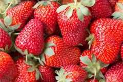 Macro picture of a Juicy ripe Strawberry Royalty Free Stock Images