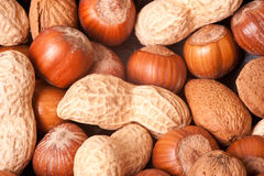 Macro picture of nuts Royalty Free Stock Photos