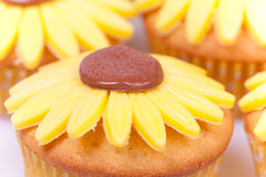 Macro Picture Of Sunflower Cupcakes Royalty Free Stock Photography