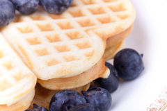 Macro Picture Of Waffels Royalty Free Stock Image