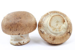 Macro picture of Organic Cremini mushrooms. Royalty Free Stock Images