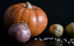 Macro picture showing the ingredients for a pumpkin soup royalty free stock photos