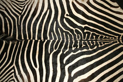 Macro picture of a zebra skin texture as a  background Stock Photo
