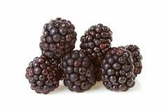 Macro of pile blackberries Royalty Free Stock Photo