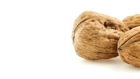 Macro pile of walnuts isolated on white sliding from side to side stock footage