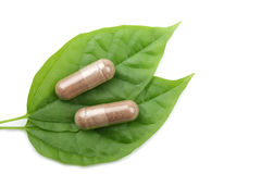 Macro of pills over green leaf isolated Royalty Free Stock Image