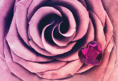 Macro Pink Rose with Crystal Heart Stock Image