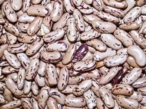 Macro of pinto beans at a market royalty free stock photo