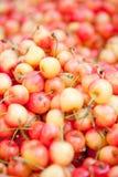 Macro plan rapproché rouge jaune frais de merises sur le marché Photographie stock libre de droits