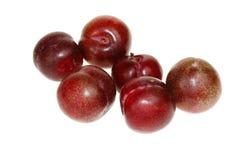 Macro plums. Macro shot of red plums Stock Photos