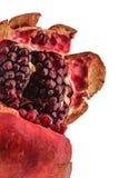 Macro Pomegranate Stock Images