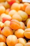 Macro primo piano di rosso arancio delle pesche fresche delle albicocche sul mercato Fotografia Stock Libera da Diritti