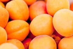 Macro primo piano di rosso arancio delle pesche fresche delle albicocche sul mercato Fotografie Stock Libere da Diritti