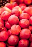 Macro primo piano di rosso arancio delle pesche fresche delle albicocche sul mercato Immagini Stock Libere da Diritti