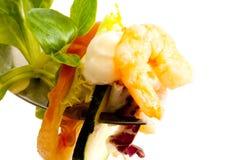 Macro primo piano di una boccata dell'insalata del gamberetto Fotografia Stock Libera da Diritti