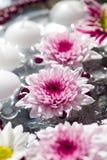 Macro projectile des décorations de table de fleur Photographie stock