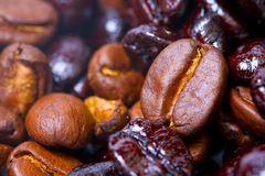 Macro projectile des haricots de brun de café Photo stock