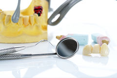 Macro of prosthetic teeth with dental tools Royalty Free Stock Image