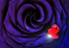 Macro Purple Blue Rose with Crystal Heart Royalty Free Stock Images