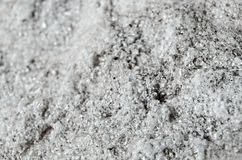 Macro quarzo Crystal Black e bianco 2 Immagine Stock