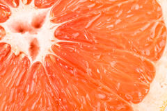 Macro of red grapefruit Royalty Free Stock Photos