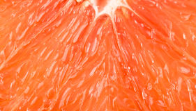 Macro of red grapefruit Royalty Free Stock Image