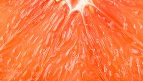 Macro of red grapefruit Royalty Free Stock Image