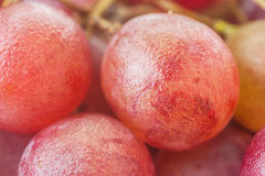 Macro of red grapes isolated Stock Photography