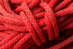 Macro of red Nylon rope texture background Royalty Free Stock Photography