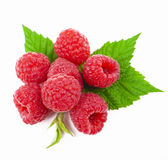 Macro of red raspberry Stock Photos