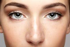 Macro ritratto del primo piano del fronte femminile Spirito aperto degli occhi della donna umana Fotografia Stock