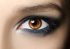 Macro ritratto del primo piano del fronte femminile Occhio umano della donna con trucco di bellezza ed i cigli naturali lunghi Ra Immagine Stock