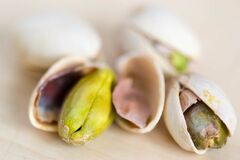 Macro of roasted pistachio seed Royalty Free Stock Photography