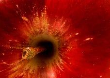 Macro roja del extracto de la manzana Imagen de archivo