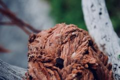 Macro photography of rope royalty free stock photography