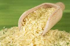 Macro scoop of rice Stock Photography